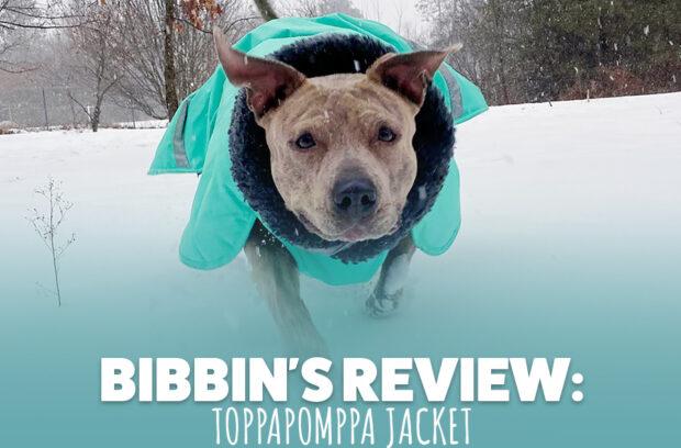 Bibbin's Review: Pomppa Jackets
