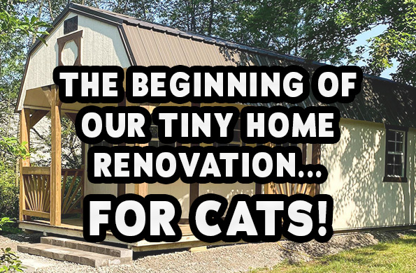 Tiny Home for Cats